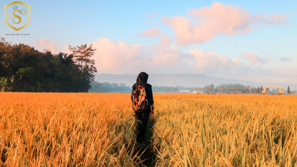 30 idée pour rebooster le le moral comment prendre rendez-vous avec le bonheur